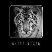 White Tiger_[LG_Home+]
